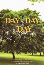 Day by Day by Day book cover