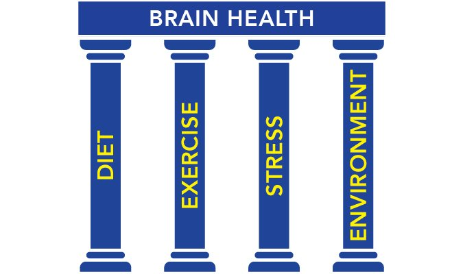 Cognitive Brain Health Pillars, Dr. Joseph Maroon