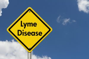 Lyme Disease Prevention and Treatment